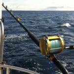 Trolling From A Sailboat: How To