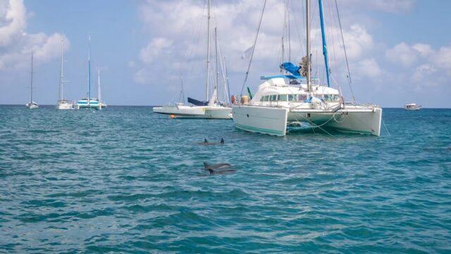 10 Best Catamarans Under 200k